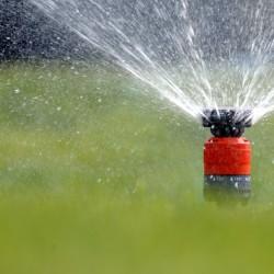 Garten wird gewässert mit Rasensprenger