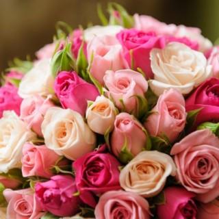 flors amor
